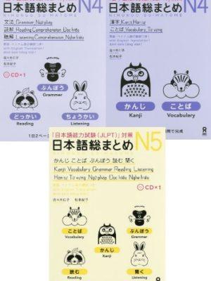 JLPT N5 N4 Chile texto japonés