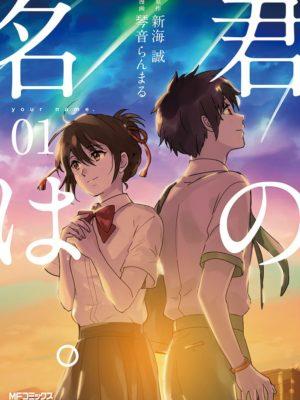Manga Kimi no Na wa Your Name Japonés Chile Tienda Figuras Anime Santiago
