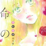 Manga Kimi ni Todoke Bangai-hen: Unmei no Hito Japonés Tienda Anime Figuras Chile Santiago